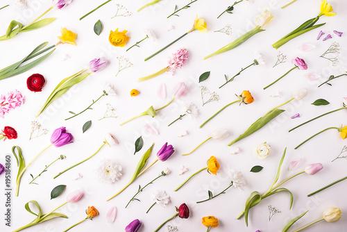 Staande foto Wanddecoratie met eigen foto Flowers on a white background.