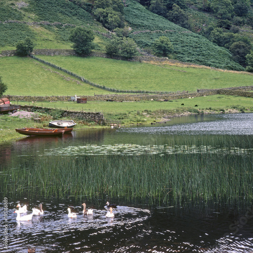 Foto op Canvas Olijf England, Cumbria, Lake District, Watendlath Tarn