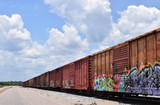 Old rusty train cars with graffiti on sunny day.