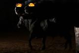 toros en españa - 195230897