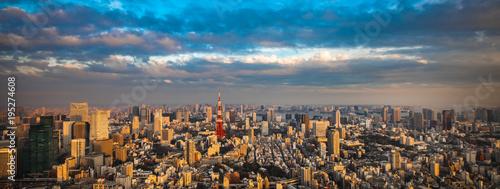Aluminium Tokio Tokyo aerial panoramic view