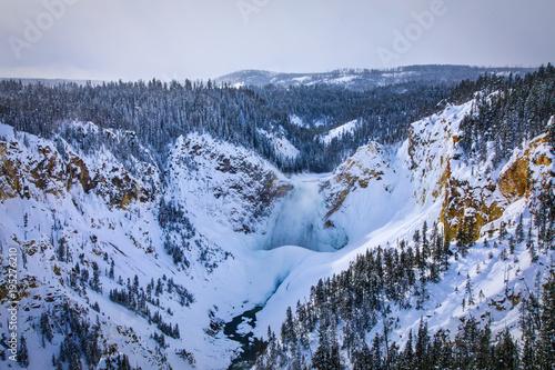 Fotobehang Bison Grand Canyon of Yellowstone - Yellowstone Falls