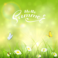 Green nature sunny background and text Hello Summer