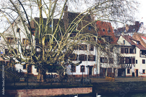 Fototapeta Spring France, Strasbourg