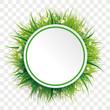 Circle Green Grass Flowers Transparent