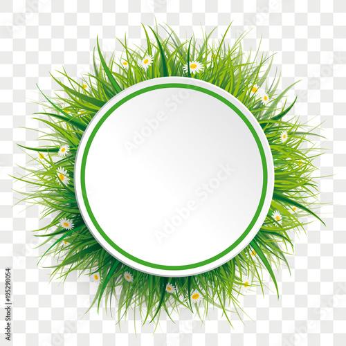 Koło Zielona trawa kwiaty przezroczyste