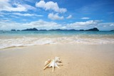Beautiful beach in the Philippines  - 195298828