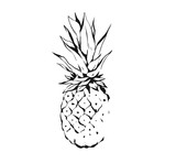 Hand drawn vector abstract exotic tropical ink graphic drawing fruit pineapple illustration icon isolated on white background.Healthy lifestyle concept - 195299215