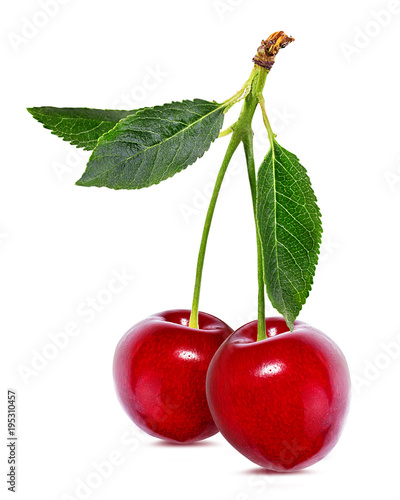 Fotobehang Kersen Cherry with leaves isolated on white background.