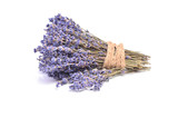 Lavender on a white background - 195311858