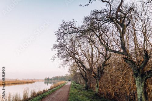 Foto op Canvas Diepbruine Maritimes Greifswald - Spaziergang am Ryck