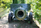 Front of the green cannon - 195331443