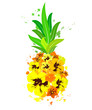 Pineapple with Hawaiian flowers, exotic fruit, isolated on a white