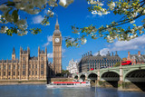 Big Ben with boat during spring time in London, England, UK - 195346620