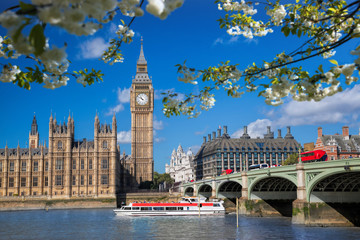 Big Ben with boat during spring time in London, England, UK