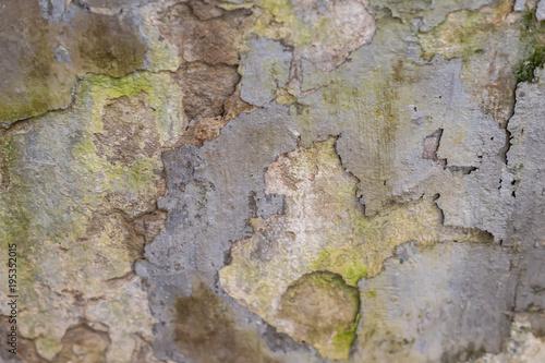 Foto op Canvas Betonbehang grunge concrete texture