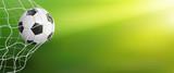 Soccer Ball In Goal On Green  Wall Sticker