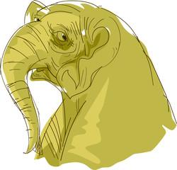 illustration Animal