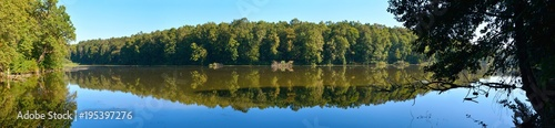 Panorama of a forest lake - 195397276