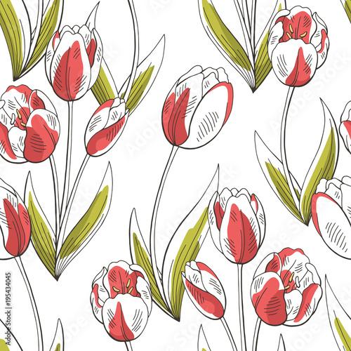 Fototapeta Tulip flower graphic red green color seamless pattern sketch illustration vector