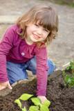 Enfant semant les graines. - 195459268