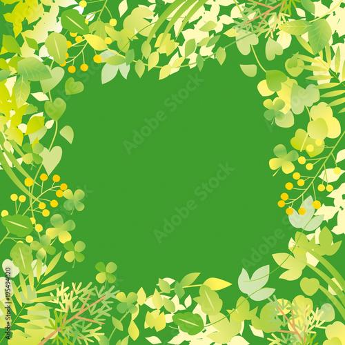 グリーン フレーム 緑
