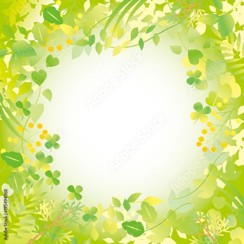 グリーン フレーム 黄緑  ぼかし