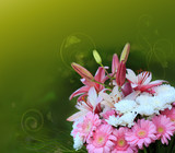 Colorful lily flowers bouquet isolated.