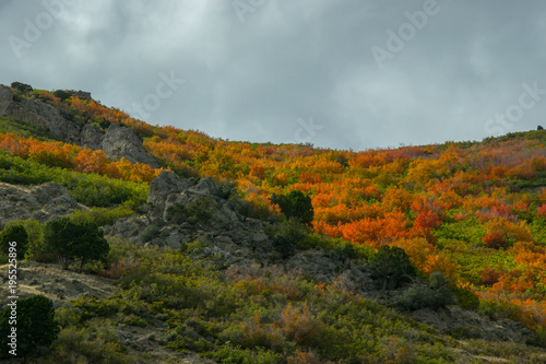 Foto op Canvas Bleke violet Rugged fall landscape with grey sky