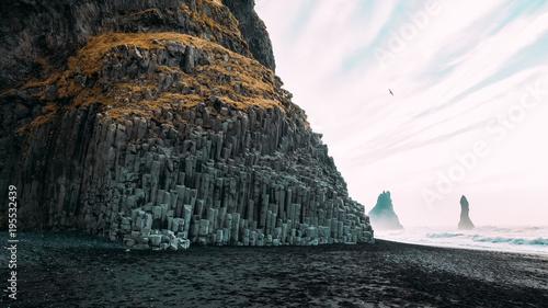 Foto op Canvas Grijze traf. Beautiful landscape and a photograph that inspires you