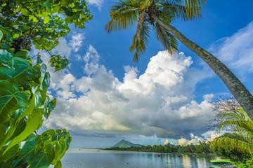 Beautiful ocean landscape, bay in a tropical Mauritius island, La Gaulette region.