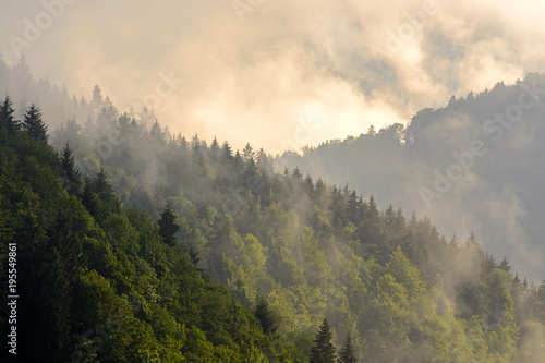 Fotobehang Grijs Green wooded mountain slopes, low clouds