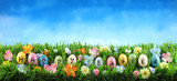 Bright colorful Easter eggs on green grass with flowers against blue sky - 195552282