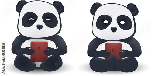 two pandas isolated on white background.