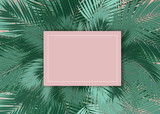 Palms leafs blank card pink background concept - 195626483