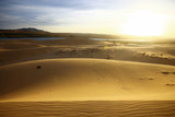 Sand mountains in the desert - 195643866