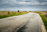 Road in the Guerande salt marshes, France. Moody sky. - 195645480
