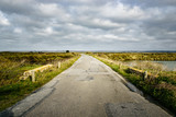 Road in the Guerande salt marshes, France. Sunlight and moody sky.  - 195645690