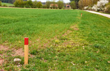 Markierter Grenzverlauf bei der Landvermessung - 195650850