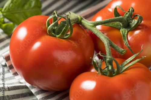 Healthy Organic Italian Herbs and Vegetables