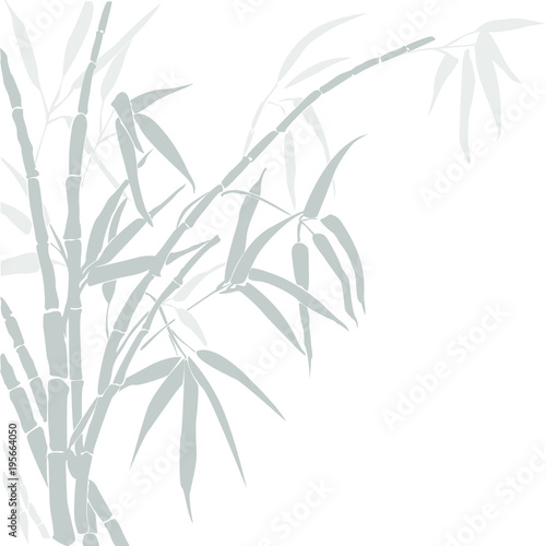 Bamboo. Vector silhouette of bamboo. Silhouette bamboo gray colors isolated on white.