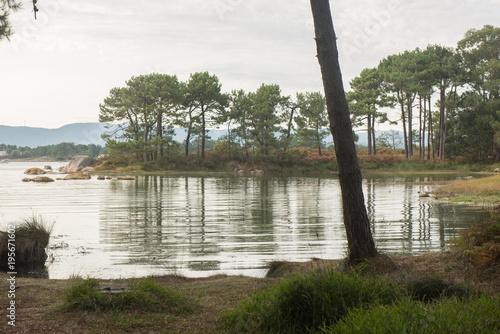 Fotobehang Khaki Carreiron natural park in Arousa Island