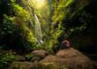 Cascada - bosque de Los Tilos