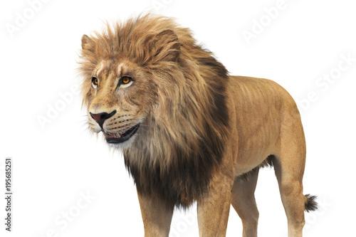 Fototapeta Lion beige fur majestic leader, close view. 3D rendering