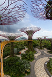 View from the Supertree Grove from the skyway at Gardens by the Bay, Singapore - 195706065