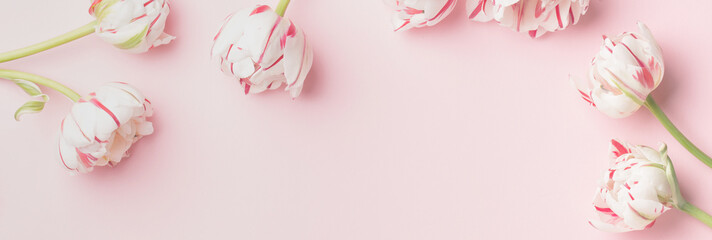 Spring morning concept. Flat-lay of flowers over light pink background, top view with space for your text © Rubleva Elena