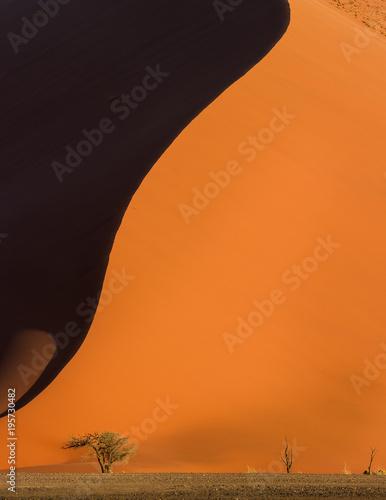 Poster Oranje eclat Namib Desert, sand dunes at sunset, Sossusvlei, Namibia, Africa