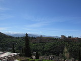 View to Alhambra palace, Granada, Andalusia, Spain
