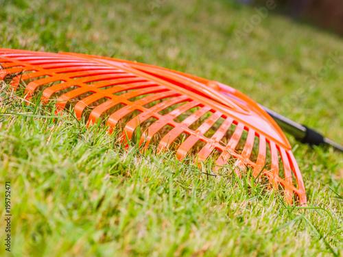 In de dag Gras Orange rake on stick collecting grass, garden tools