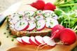 Bread with radish, Radieschen, Brot mit Radieschen und Schnittlauch, Frühling, Frühjahrskur, Textraum, copy space